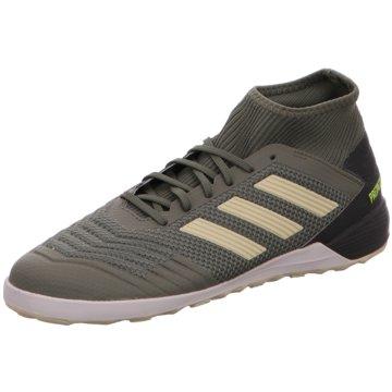 adidas Hallen-SohlePredator 19.3 IN grün