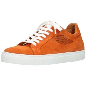 Wolky Komfort Schnürschuh orange