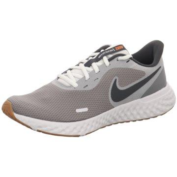 Nike RunningNike Revolution 5 - BQ3204-008 grau