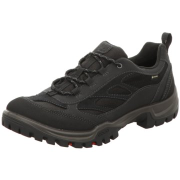 Ecco Outdoor SchuhECCO XPEDITION III W schwarz