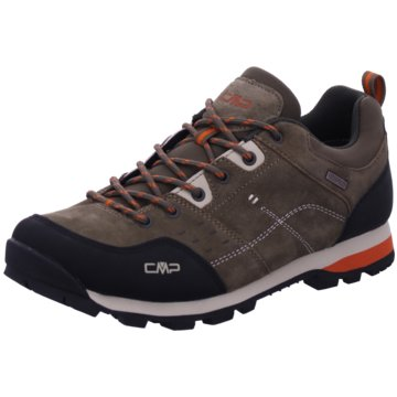 CMP F.lli Campagnolo Outdoor SchuhALCOR LOW TREKKING SHOE WP - 39Q4897 braun