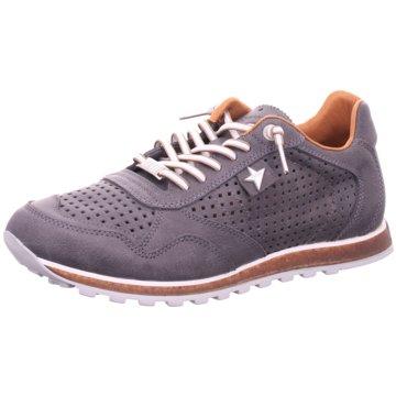 Cetti Sneaker Low -