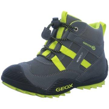 Geox Wander- & Bergschuh grau