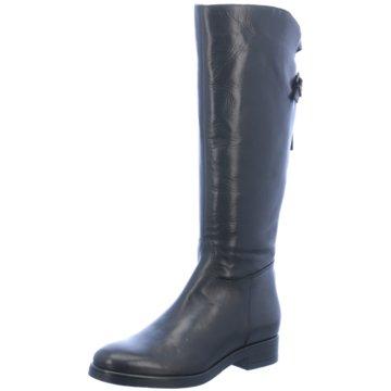 Fantasy Shoes Klassischer Stiefel schwarz