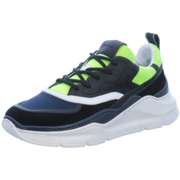 Barracuda Sneaker Low bunt