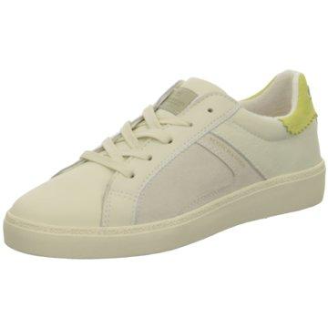 Scotch & Soda Sneaker Low beige