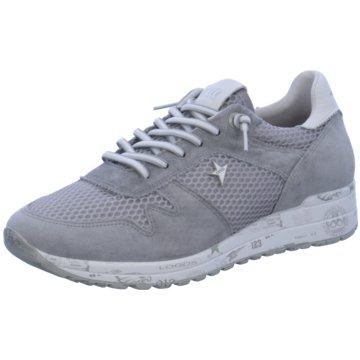 Cetti Sneaker Low grau