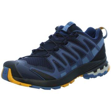 Salomon TrailrunningXA PRO 3D v8 - L41271300 blau