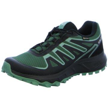 Salomon TrailrunningLIONEER GTX W MALLARD GREEN/ - L41332700 grün