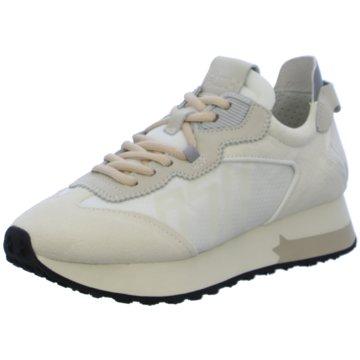 Ash Sneaker weiß