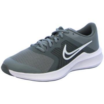 Nike RunningDOWNSHIFTER 11 - CZ3949-012 grau