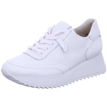 Paul Green Plateau SneakerJogger weiß