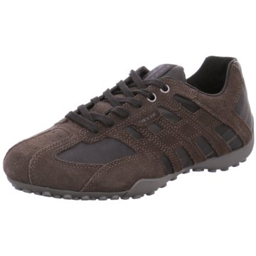 Geox Sportlicher SchnürschuhSneaker braun