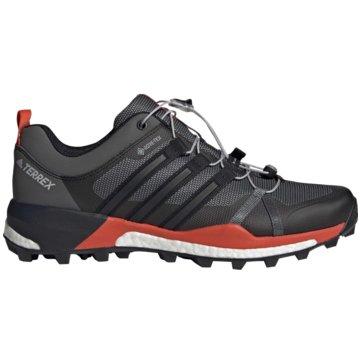 adidas TrailrunningTerrex Skychaser Boost GTX -