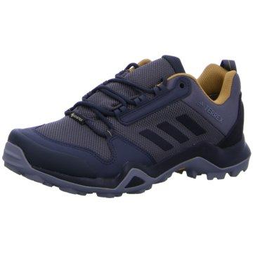 adidas Outdoor SchuhTERREX AX3 GTX - BC0517 blau