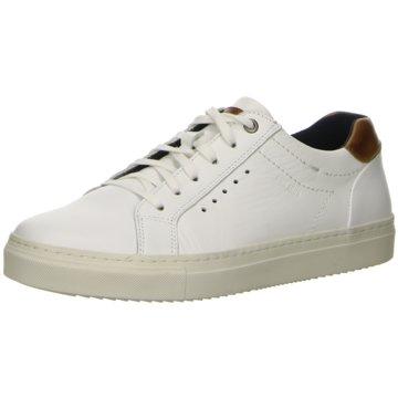 Salamander Sneaker Low weiß