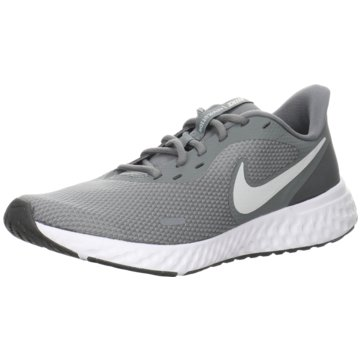 Nike RunningNike Revolution 5 Men's Running Shoe - BQ3204-005 grau