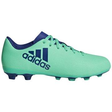 adidas Nocken-SohleX 17.4 FG Fußballschuhe türkis