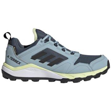 adidas TrailrunningTERREX AGRAVIC TR GTX W blau