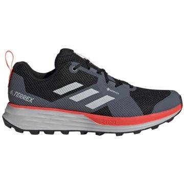 adidas Outdoor SchuhTerrex Two GTX grau