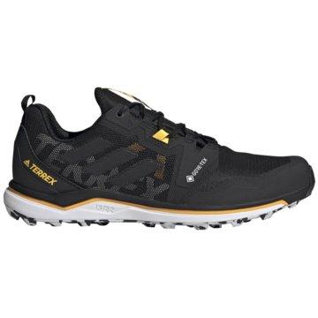 adidas Outdoor SchuhTerrex Agravic GTX -