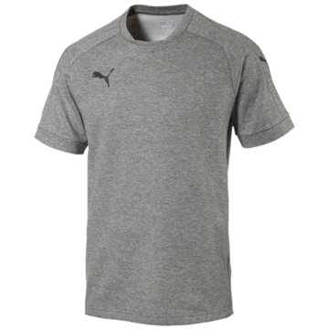 Puma T-ShirtsAscension Casuals Tee Herren T-Shirt grau -