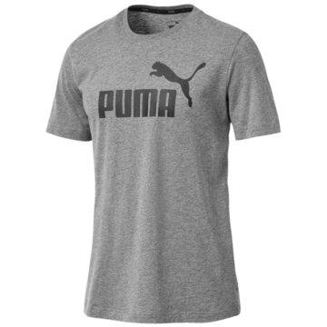 Puma T-ShirtsEssentials Logo Tee grau