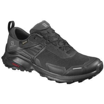 Salomon Outdoor SchuhSchuhe X RAISE GTX Black/Black/PHAN schwarz