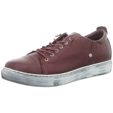 Andrea Conti Sneaker Low rot