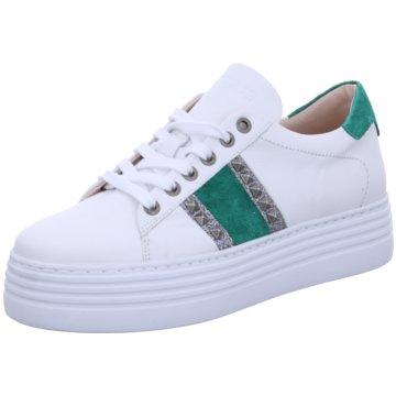 Mjus Plateau Sneaker weiß