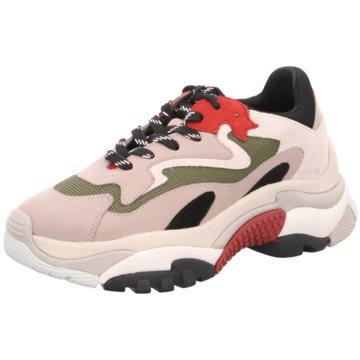Ash Plateau Sneaker grau