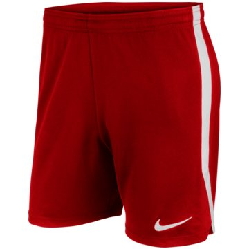 Nike FußballshortsDRI-FIT - AJ1239-657 -
