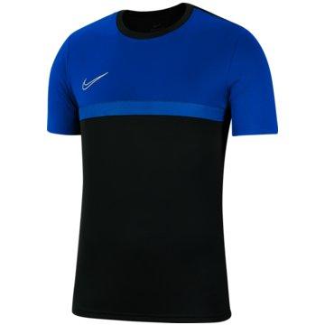 Nike FußballtrikotsDRI-FIT ACADEMY PRO - BV6947-062 -