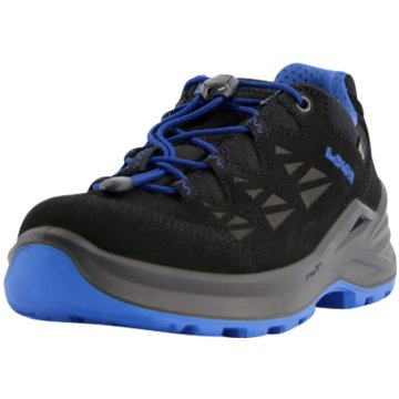 LOWA Wander- & BergschuhDIEGO II GTX LO - 640150 schwarz