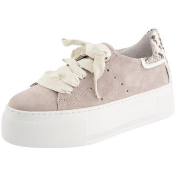 Alpe Woman Shoes Plateau Sneaker grau