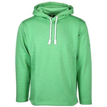 wind sportswear Hoodies grün