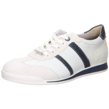Lloyd Sneaker LowArgon weiß