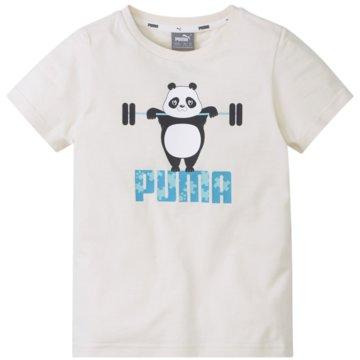 Puma T-ShirtsPAW TEE - 586221 grün