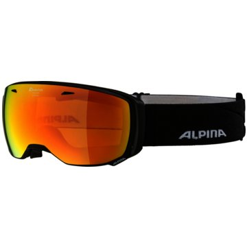 ALPINA Ski- & SnowboardbrillenESTETICA HM schwarz