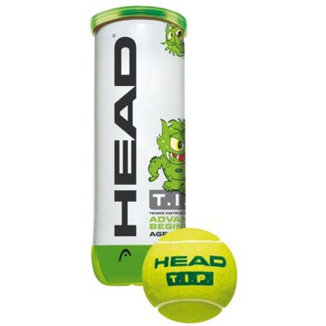 Head Tennisbälle3B HEAD TIP GREEN - 6DZ - 578133 sonstige