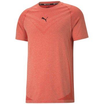 Puma T-ShirtsTRAIN TECH EVOKNIT SS TEE - 520111 rot