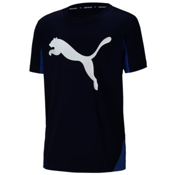 Puma T-ShirtsACTIVE SPORTS CAT GRAPHIC - 581182 006 blau
