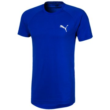 Puma T-ShirtsEVOSTRIPE TEE - 581465 041 blau