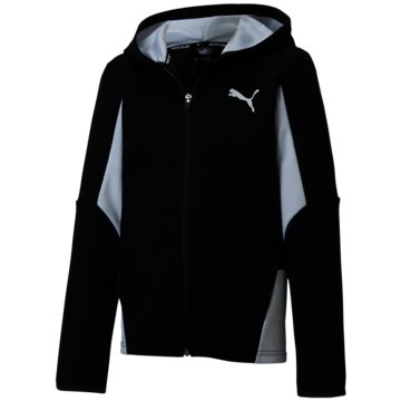 Puma SweatshirtsACTIVE SPORTS HOODED JACKET - 582327 001 schwarz