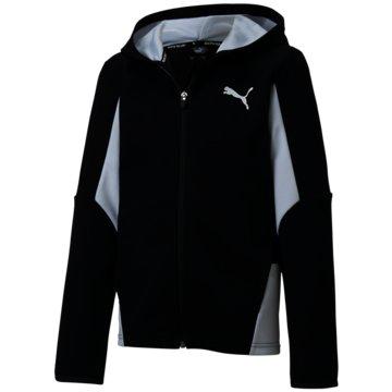 Puma SweatshirtsACTIVE SPORTS HOODED JACKET - 582327 001 schwarz