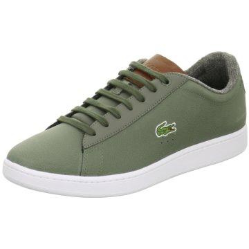 Lacoste Sneaker Low oliv