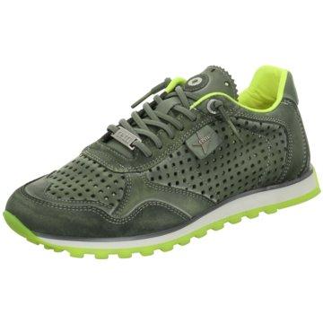 Cetti Sneaker grün