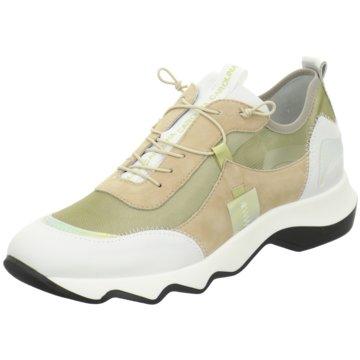 Donna Carolina Sneaker -