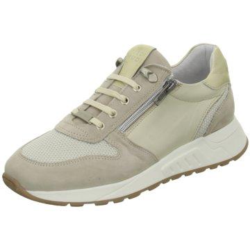 Piedi Nudi Sneaker Low beige