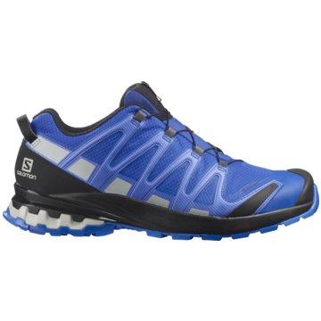 Salomon TrailrunningXA PRO 3D v8 GORE-TEX - L41274600 blau